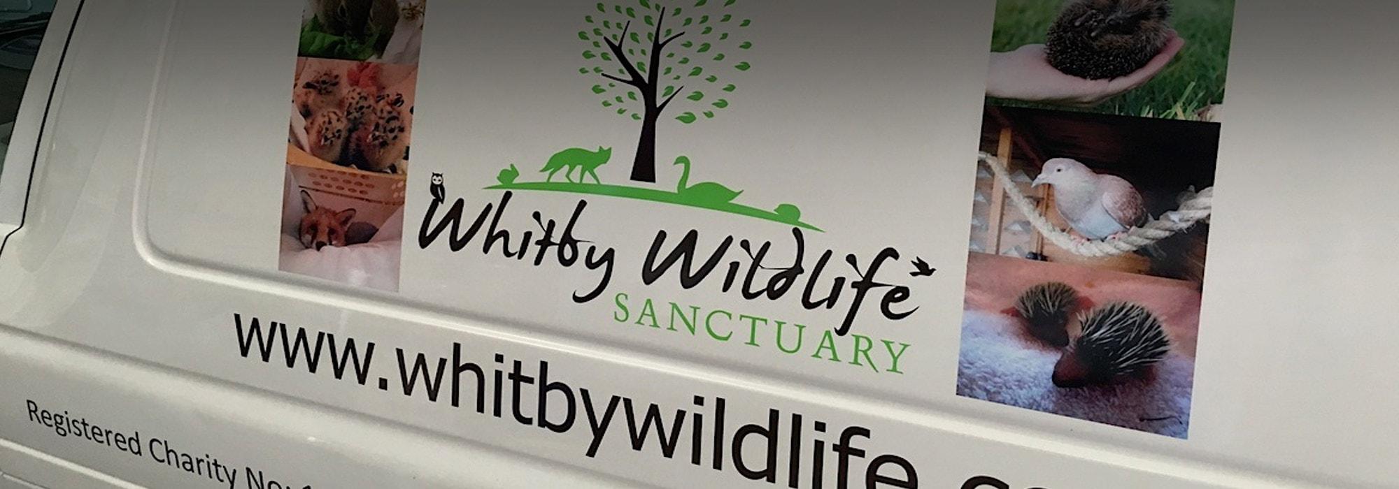 Vinyl Signs Whitby
